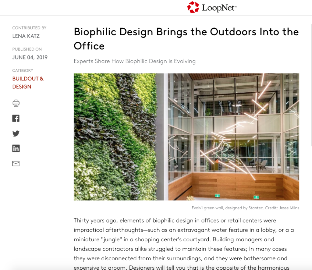 Biophilic Design Brings the Outdoors Into the Office